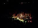 Koncert CZerwonych Gitar_8