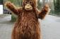 O kampanii Ocalmy Orangutany #olejolej